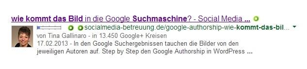 wie kommt das Bild in die Google Suchmaschine